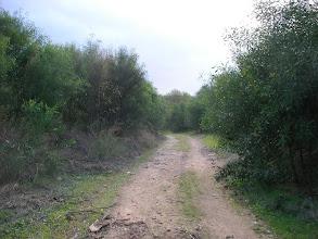 Photo: Patara Kumulu - 12.11.2011