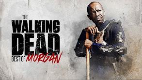 The Walking Dead: Best of Morgan thumbnail