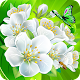 Flower Crush Match 3 (game)