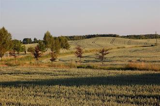 Photo: Pola w okolicach Boreczna (Schnellwalde) i jez. Piekło