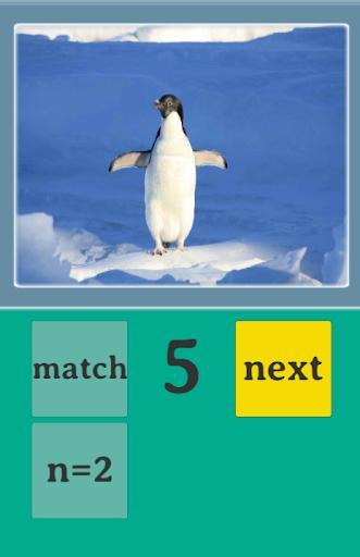 Pics-n-match|玩教育App免費|玩APPs