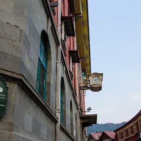 Heritage Building in Shimla by Debasish Chatterjee - Buildings & Architecture Public & Historical