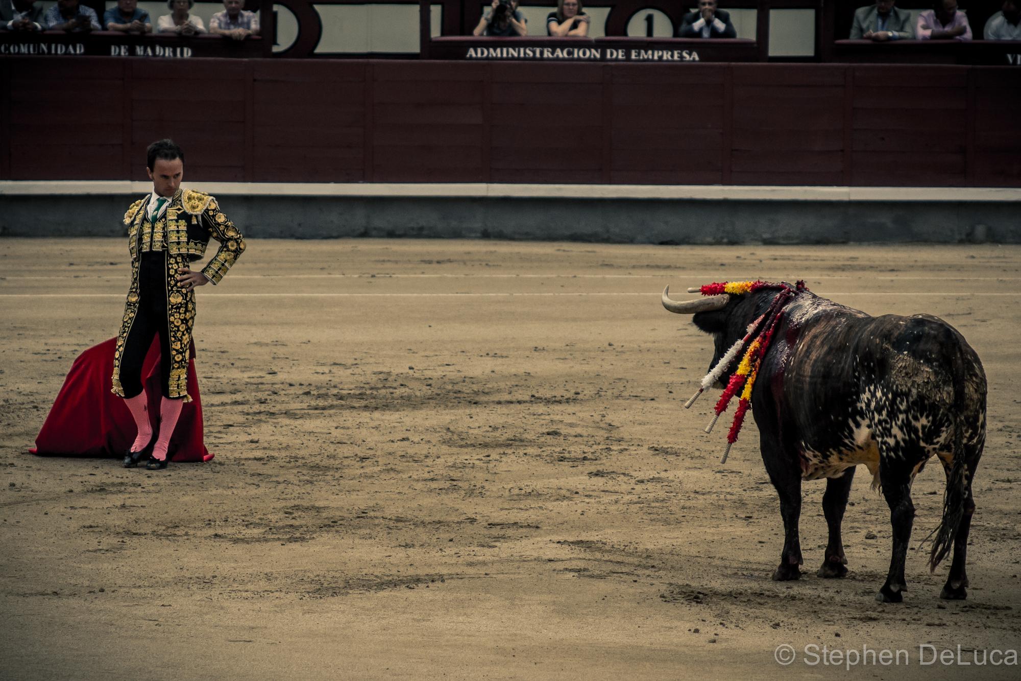 Photo: Bullfight-10