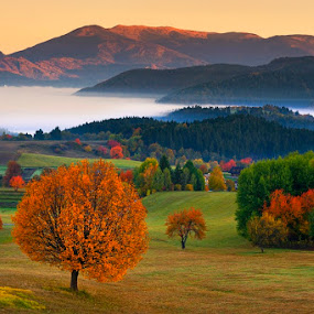 Fall sunrise by Boris Michaliček - Landscapes Prairies, Meadows & Fields ( mountains, village, fall, trees, meadows )