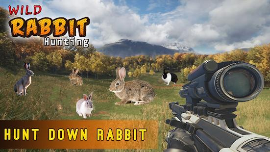 Rabbit Hunting Challenge - náhled