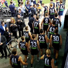 by Sam Medzic - Sports & Fitness Australian rules football (  )