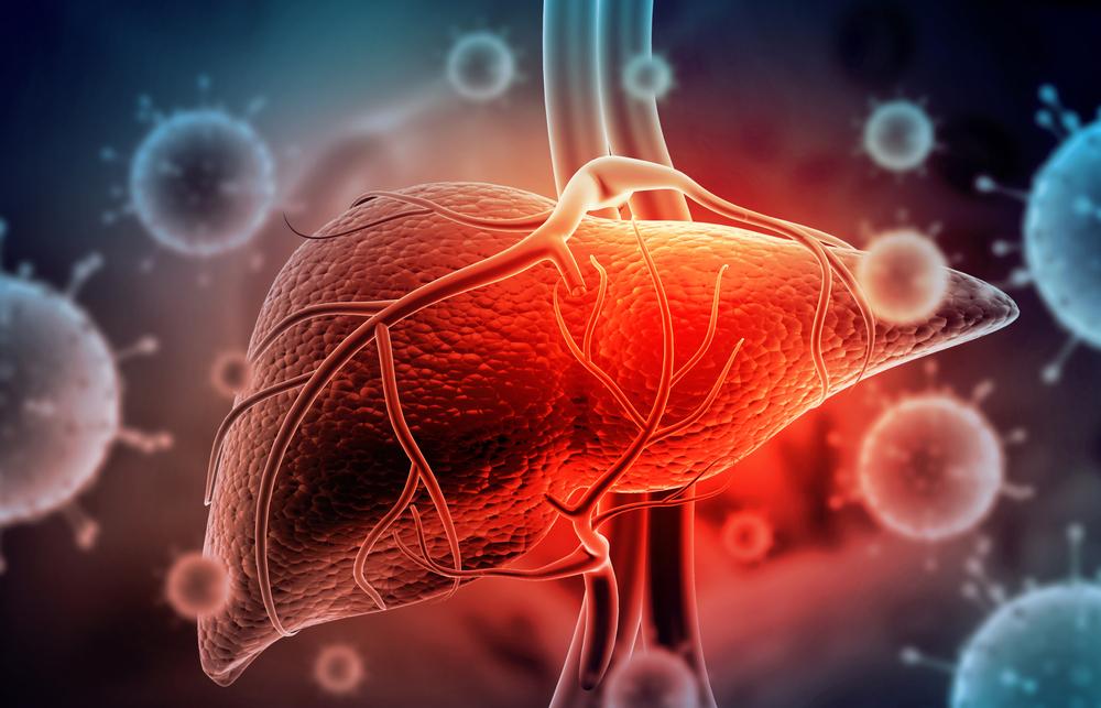 Hepatite pode ser caracterizada pelo processo de inflamação do fígado. (Fonte: Shutterstock)