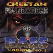 Foundations Of Bass Vol. 1