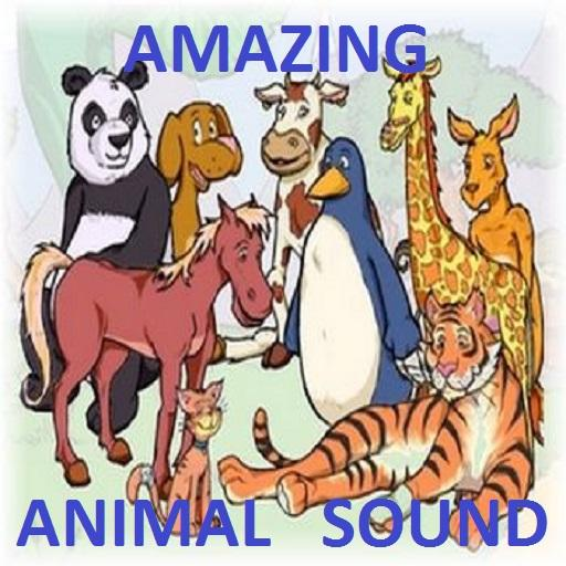 Interesting Animal Sounds