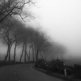 by Anita Atta - Black & White Landscapes (  )