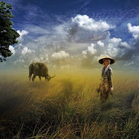 Pa'galung sola tedong by Miswar Rasyid - Digital Art Things