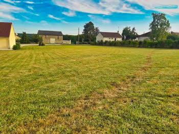 terrain à Mareuil-en-Brie (51)