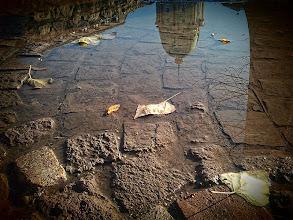 Fotó: Őszi tócsa