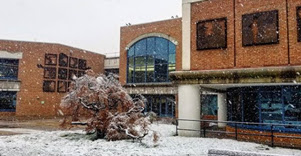 Central Library in the snow. Photo by @arlingtonvalib.