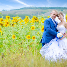 Wedding photographer Aleksandr Pavlenko (Olexandr). Photo of 11.12.2015