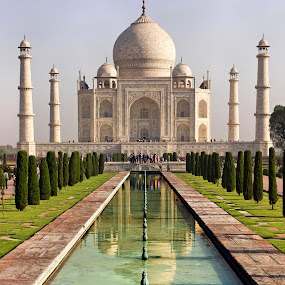Taj Mahal, Agra, India by Amit Aggarwal - Buildings & Architecture Public & Historical ( reflection, marble, white, taj mahal, agra, india, wonders of world, garden, amit aggarwal,  )
