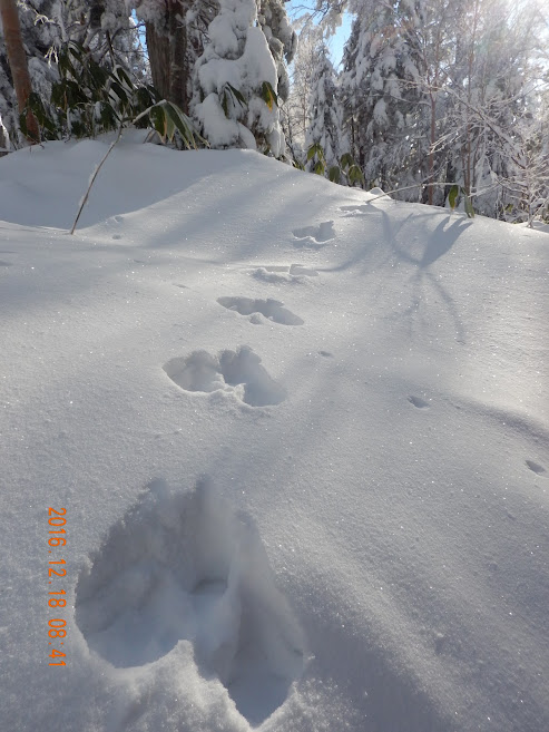 Mt. Yakedake thumbnails No.5