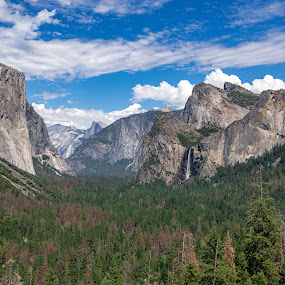 Yosemite by Mehul V - Landscapes Mountains & Hills