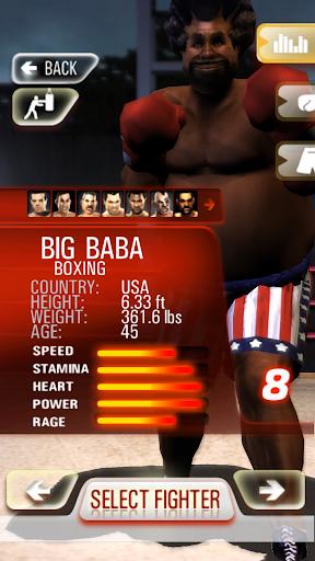 Realtech Iron Fist Boxing ss1