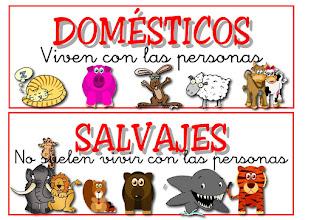 Photo: animales domesticos y salvajes