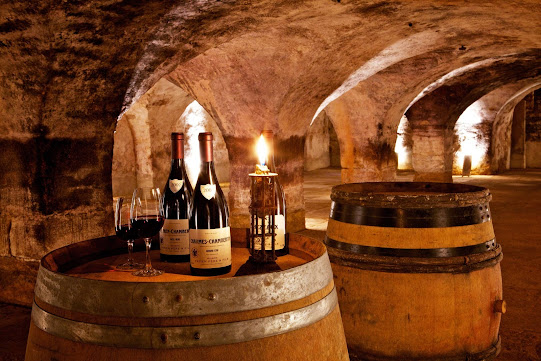 Дегустация бургундских вин
