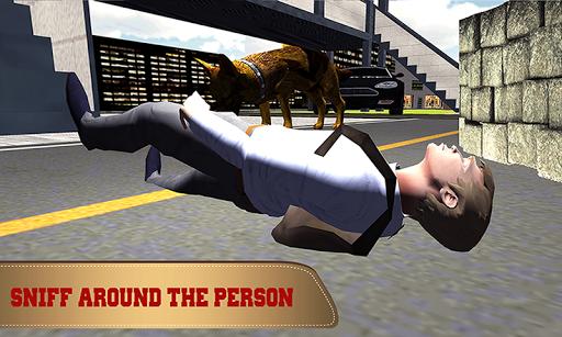 Stray Dog Chase Simulator 3D