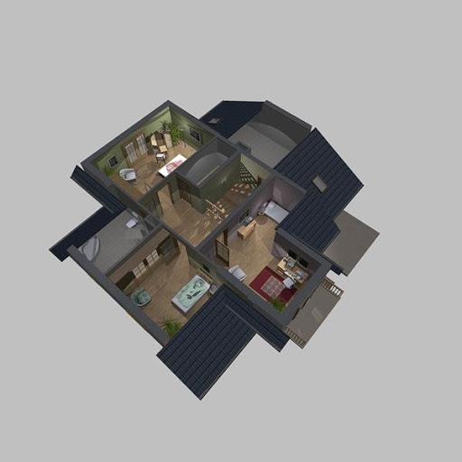 APS 117 - Rzut poddasza 3D