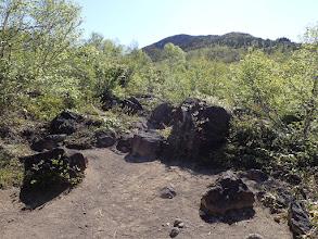 火山岩が見られる