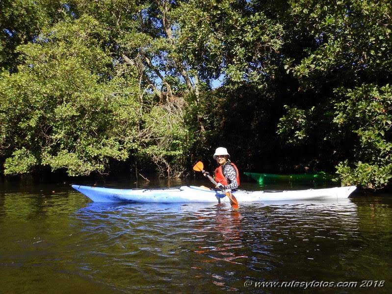 Kayak río Palmones