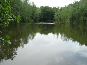 Photo: C6080030 Obora - Arboretum Bramy Morawskiej