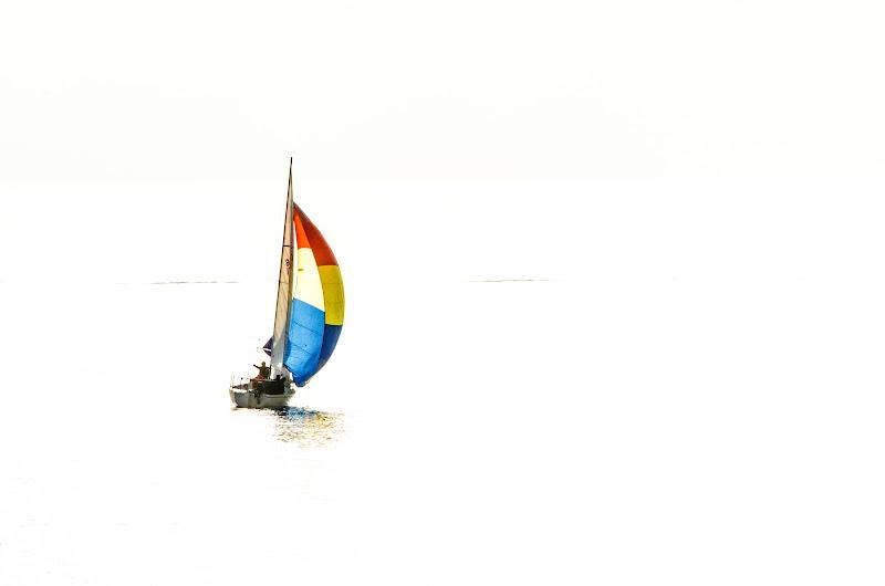 sola con il vento di Elisabetta Castellano