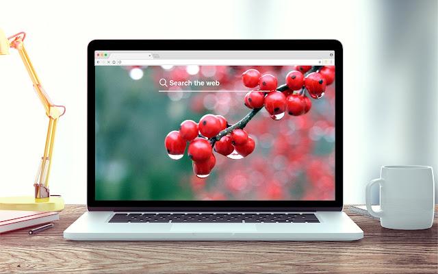 Berries New Tab Fruit Theme