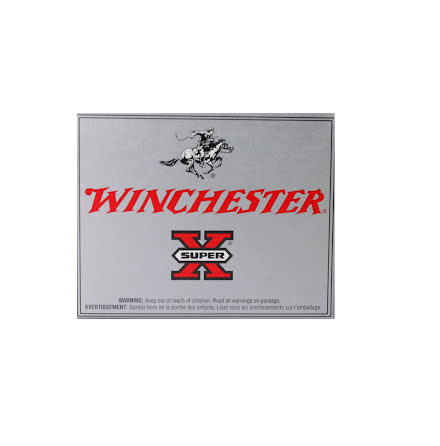 Winchester kal 20 hollow point