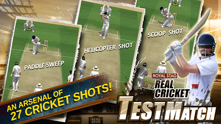 Real Cricket™ Test Match 1.0.4 screenshot 469871