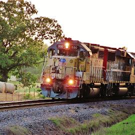 Local Through The Countryside by Rick Covert - Transportation Trains ( railroad, countryside, locomotive, rural, arkansas, railroad tracks, trains )