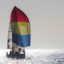 Sailing by Chris Seaton - Sports & Fitness Watersports ( sails, racing, ocean, team, sailing )