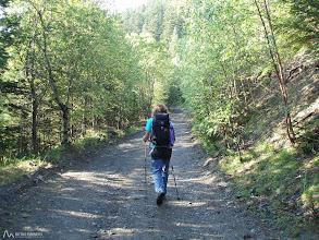 Photo: Se agradece que la excursión empiece suavemente en medio del bosque