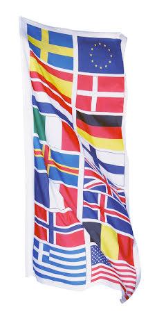 Turistflagga 16n 300x120 tyg