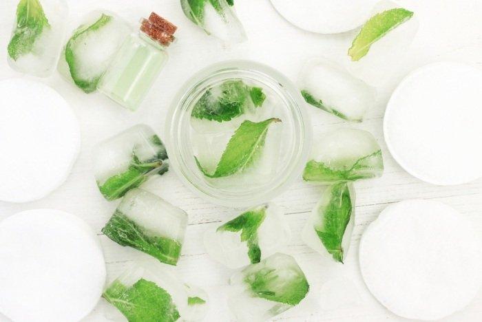 Aloe vera and basil ice cubes
