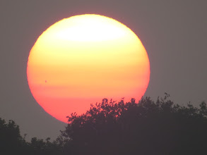 Photo: 17 Jul 13 Priorslee Lake And another opportunity to look at a sun-spot: here just below the 9 o'clock axis. (Ed Wilson)