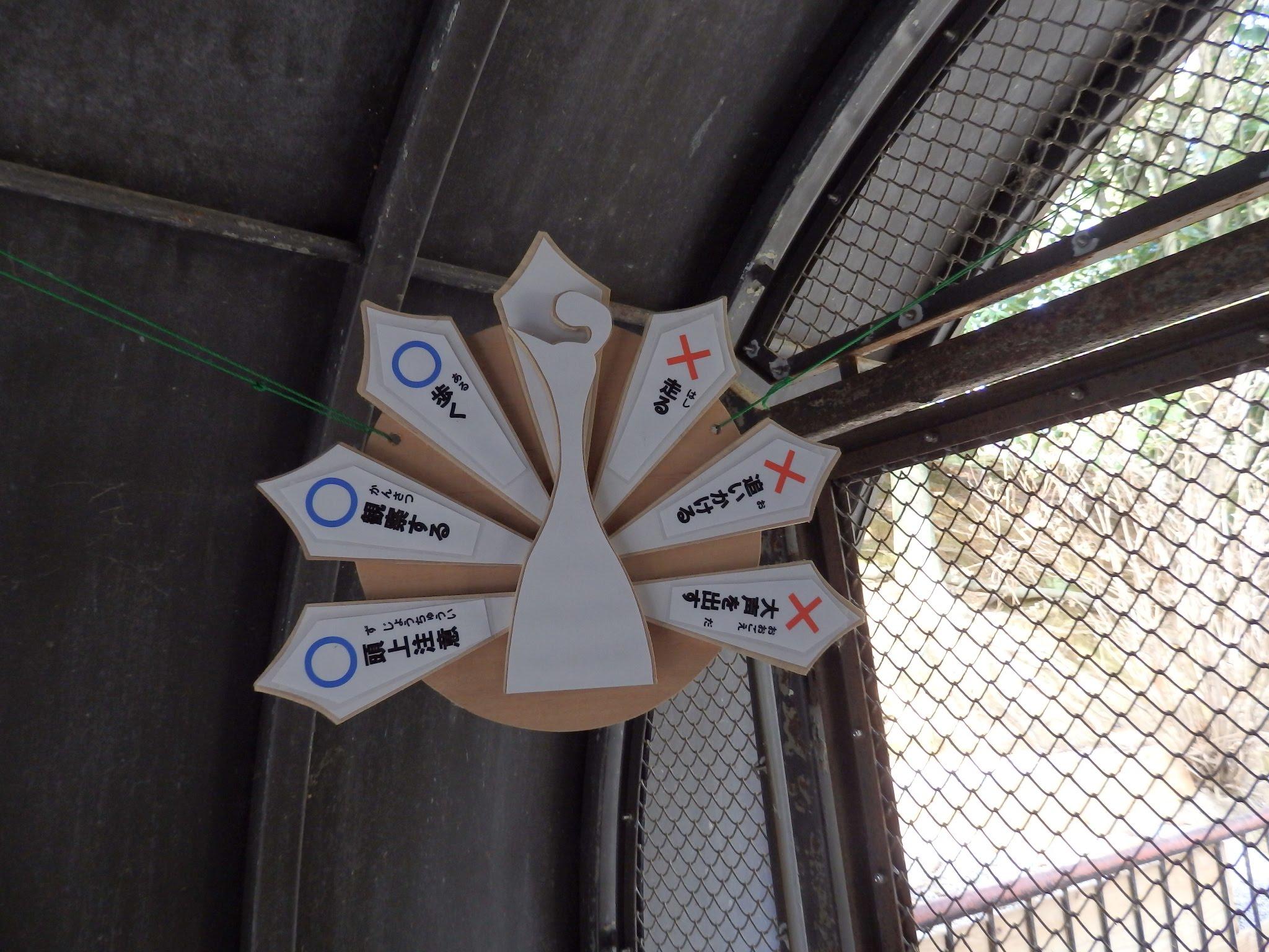 大牟田市動物園10