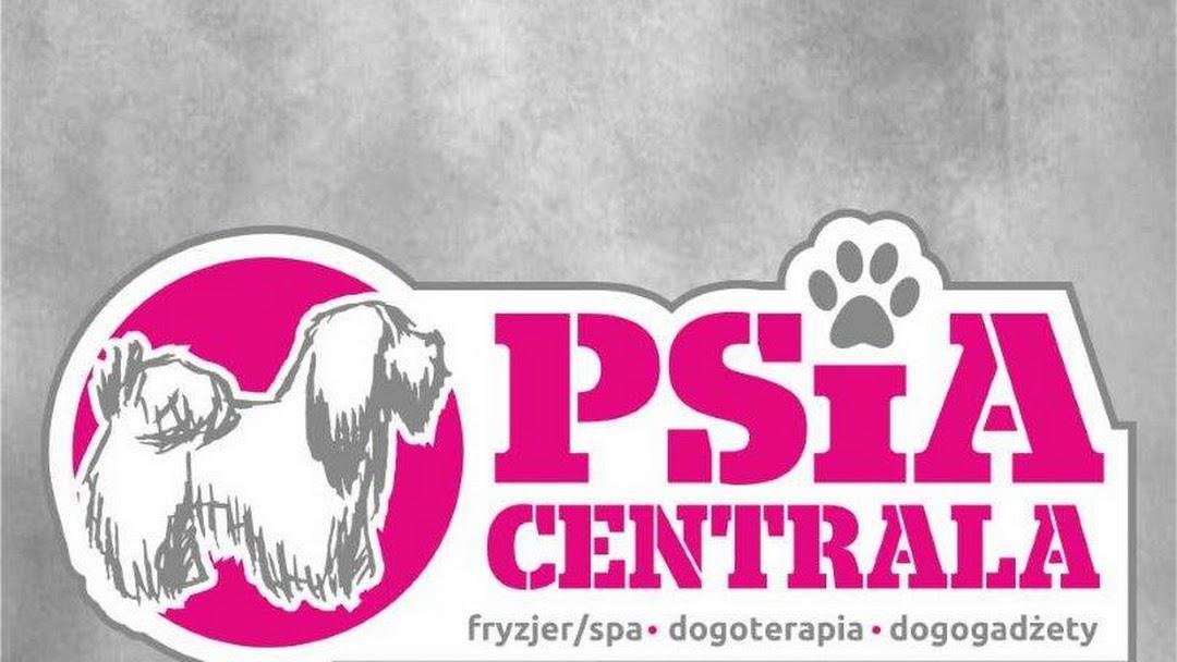 Psia Centrala Fryzjer Dla Zwierząt W Luboń