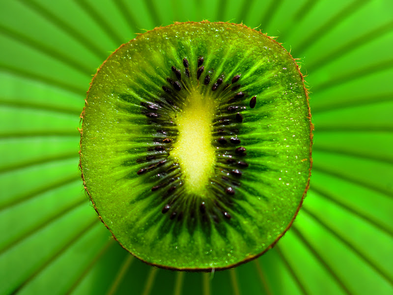 50 sfumature di verde... di leonardo valeriano