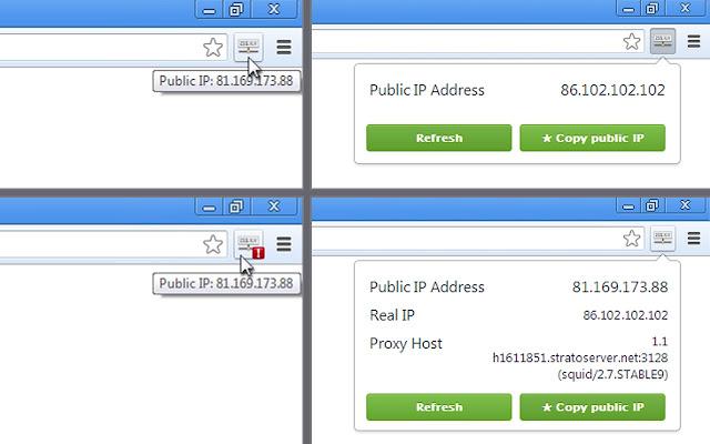 View IP address