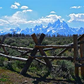 Teton Majesty by Bethany Kenney - Landscapes Mountains & Hills (  )
