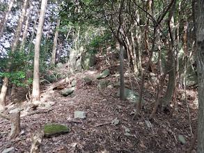 岩の多い尾根(左から巻く)
