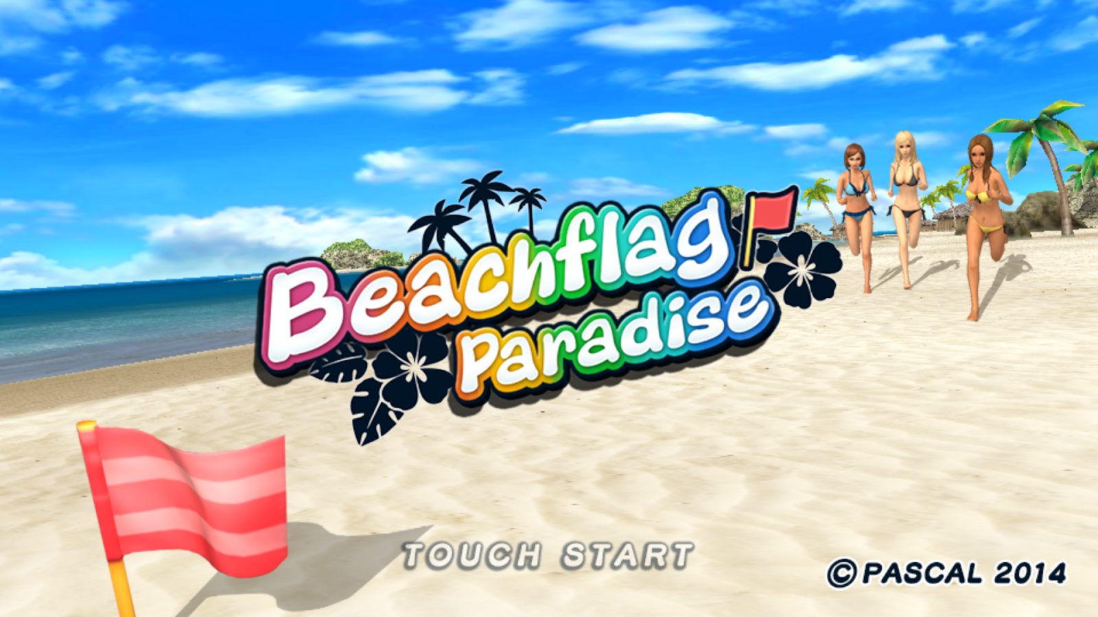 Beach Flag Paradise- screenshot