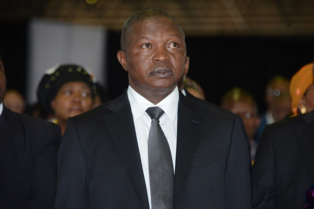 Where's DD the Cat? ask MPs who want David Mabuza to answer questions - TimesLIVE