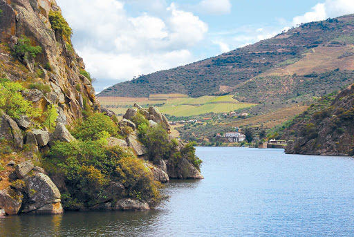 douro-river-valley.jpg - The Douro River Valley of Portugal is becoming a top destination for wine-tasting cruises.