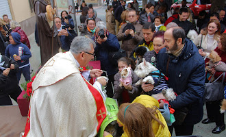 San Antón, bendición de mascotas y subasta